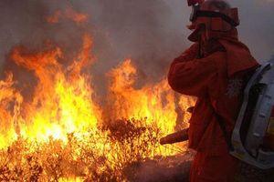 Trung Quốc: 30 lính cứu hỏa thiệt mạng do chữa cháy rừng gặp gió đổi chiều