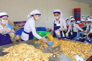 Tăng cường xuất khẩu hàng hóa sang thị trường Đài Loan