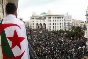 Tổng thống Algeria chấp nhận từ chức, sức ép đường phố chưa giảm