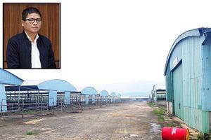 Chủ tịch HĐQT Cty CP Tập đoàn An Phú có mối quan hệ thế nào với lãnh đạo Cty Bình Hà?