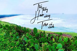 Học nàng 9X một mình tung hoành Phú Yên 4 ngày 3 đêm chỉ hơn 2 triệu