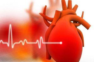 Phát hiện sớm chứng suy tim nhờ bệ bồn cầu thông minh