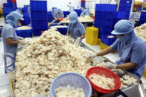 Xuất nhập khẩu Sa Giang (SGC) trả cổ tức 15% bằng tiền mặt