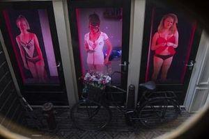 Gái mại dâm Hà Lan phẫn nộ vì lệnh cấm du khách đến phố đèn đỏ
