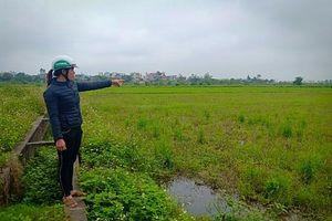 Cần sự đồng thuận tại Dự án Khu dân cư mới ở Thái Bình