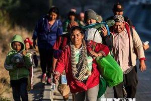 Tổng thống Mỹ cảnh báo sẵn sàng đóng cửa biên giới với Mexico