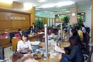 Agribank thông tin về vụ việc tiền của khách hàng bị mất tại Khánh Hòa