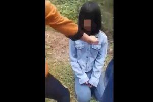 Nghệ An: Buộc nghỉ học một tuần các nữ sinh tham gia đánh bạn