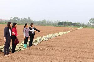 Bắc Ninh hỗ trợ phụ nữ khởi nghiệp hiệu quả