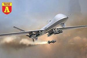 Nhờ Mỹ lắp thêm vũ khí cho MQ-9, Pháp sẽ mang 'ác điểu' cho các cuộc viễn chinh?