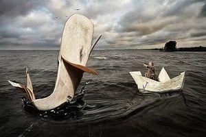 Huyền thoại 'quái vật biển xanh' bất ngờ xuất hiện trên đại dương