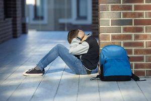 Bài 2: Tảng băng bạo lực học đường ở châu Âu
