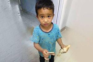 Cảm động cậu bé Ấn Độ đưa gà đi bệnh viện với tất cả số tiền mình có