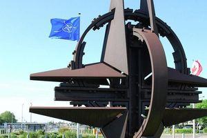 Nghị sĩ Đức kêu gọi giải thể NATO vì tổ chức này đã 'để lộ bộ mặt thật'