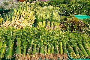 Thủ tướng gửi thư biểu dương các doanh nghiệp gói thực phẩm bằng sản phẩm tự nhiên