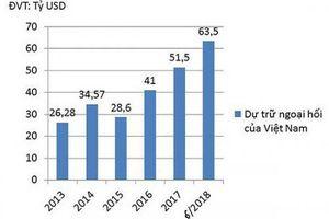 Dự trữ ngoại hối Việt Nam đang ở mức nào?