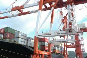 Đang còn lùm xùm, cảng Quy Nhơn muốn tăng vốn