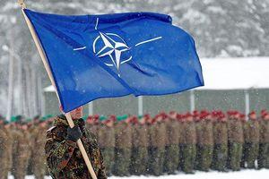 Nghị sĩ Đức mong muốn liên minh quân sự NATO sớm giải thể