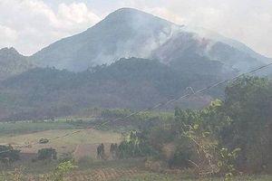 Gia Lai: Cháy rừng, gần 100 người tham gia dập lửa.