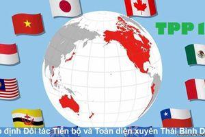 13 bộ ngành và 35 địa phương báo cáo triển khai CPTPP