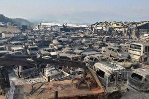 Thảm họa cháy rừng Hàn Quốc: Chưa có trường hợp người Việt thương vong