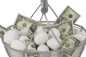 Khởi nghiệp: Có nên bỏ hết 'trứng' vào 1 'giỏ'?