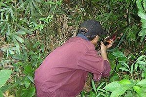 Tưởng thú rừng, thợ săn bắn nhầm người cùng làng trong bụi rậm