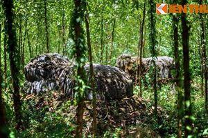 Kỳ bí hàng trăm mộ cổ trên ngọn núi hoang vắng nhất VN