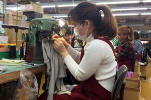 Rủi ro tiềm ẩn cho lao động Việt ở Nhật