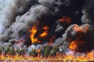 Tiếp tục cháy rừng nghiêm trọng ở Trung Quốc