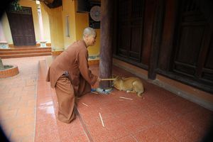 Sư thầy chùa Sùng Quang lên tiếng về clip nghi đánh đập trẻ em