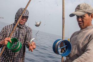 Hành trình 10 ngày câu cá mú ngoài khơi vịnh Bắc Bộ