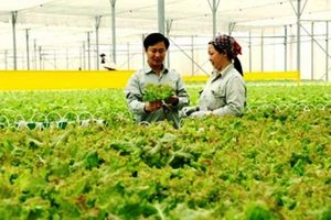 Khó khăn trong thu hút vào đầu tư nông nghiệp