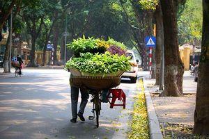 Dự báo thời tiết ngày 8/4: Hà Nội ban ngày nắng đẹp, chiều tối có mưa dông