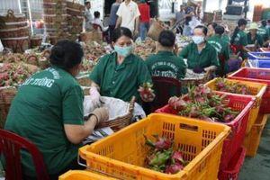 Xuất khẩu của Tiền Giang đạt gần 643 triệu USD trong quý I