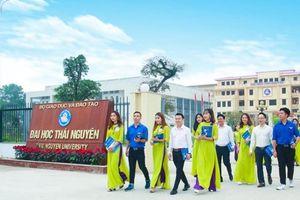Nhiều dấu hiệu sai phạm tại Đại học Thái Nguyên: Giảng viên phân thân?