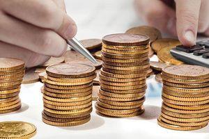 Nước sạch số 3 (NS3): Cổ đông thắc mắc về hoạt động đầu tư tài chính