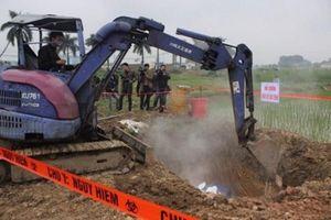 Thái Bình: 2.167 con lợn mắc dịch tả lợn Châu Phi đã bị tiêu hủy