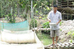 Bí quyết làm giàu: Vươn lên từ nuôi dê và ếch