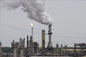 Giá dầu thế giới tăng, chạm mức cao nhất trong 5 tháng