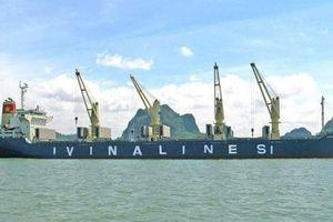 Vinalines đạt doanh thu gần 2.900 tỷ đồng