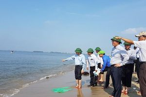 Quảng Nam: Cắm biển báo cấm tại đảo cát nổi giữa biển Hội An