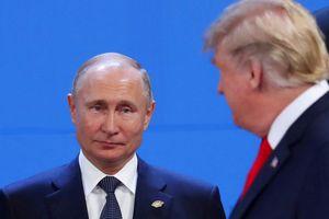 TT Putin chế nhạo cuộc điều tra của ông Mueller 'đầu voi, đuôi chuột'