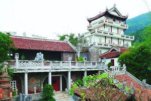 Chủ tịch Hà Nội yêu cầu khẩn trương cưỡng chế vi phạm đất rừng Sóc Sơn