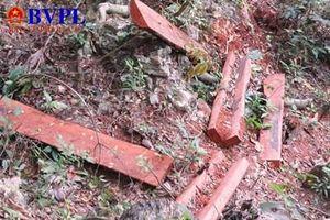 Khởi tố vụ án vườn Quốc gia Phong Nha- Kẻ Bàng bị 'xẻ thịt'