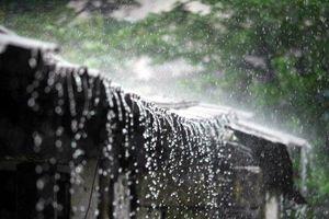 Dự báo thời tiết ngày 11/4: Nắng ấm xa dần, gió mưa cập bến
