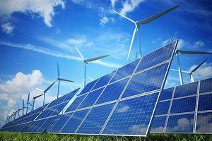Hợp tác Việt Nam - Hà Lan: Định hình tương lai năng lượng gió ngoài khơi