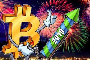 Giá tiền ảo hôm nay (10/4): Khối lượng giao dịch Bitcoin của các nhà đầu tư tổ chức tăng 4 tháng lên tiếp