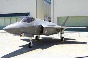 Nhật Bản tạm dừng toàn bộ đội bay F-35 sau vụ máy bay rơi