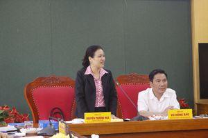 Chủ tịch VUFO Nguyễn Phương Nga: Thái Nguyên rất sáng tạo trong công tác hữu nghị